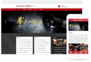体育机构协会信息发布官网模板