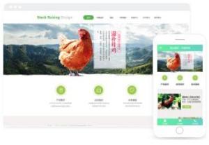 养殖牲畜技术、产品展示平台网站模板